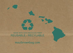 recycled paper shopping bag supplier in hawaii